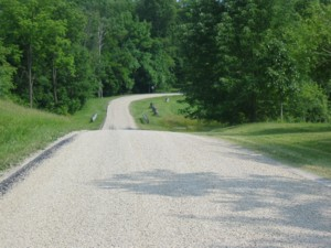 Looking down Maple Grove Road in front of the farm